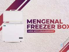 Mengenal Freezer Box