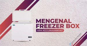 Mengenal Freezer Box